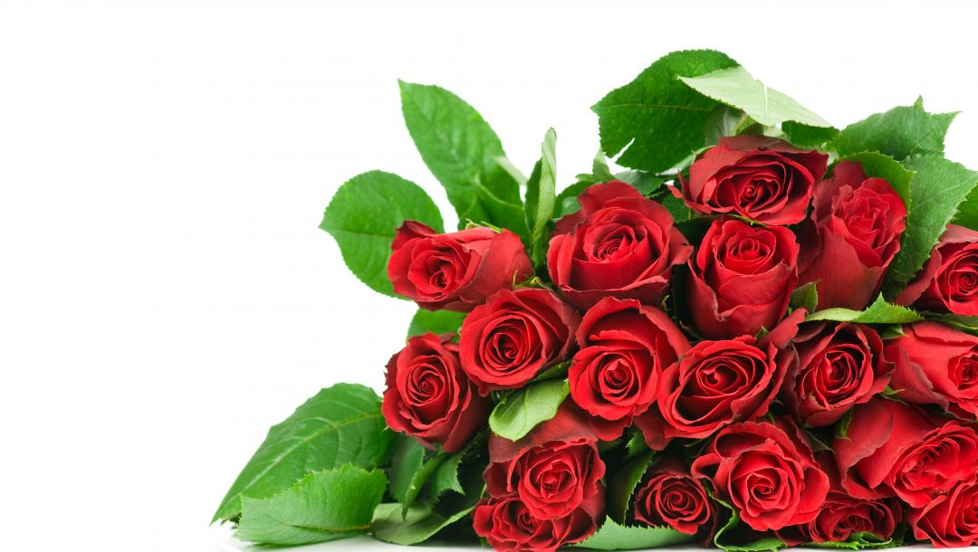 pretty,roses,nice,Bouquet,red roses,lovely,cool,rose,beautiful,flower,beauty