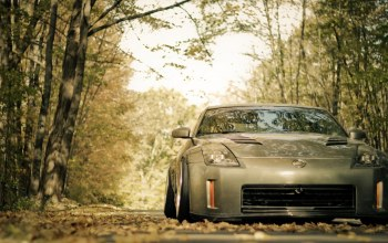 fairlady,forest,leaves