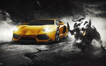 bull,Lamborghini,supercar,design,wall,yellow