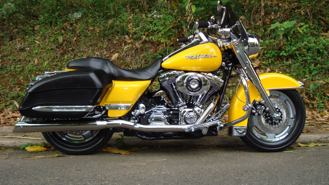 custom,Harley-davidson,road king