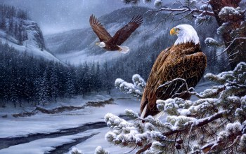 Rosemary milette,живопись,painting,river,winter,eagles,spirit of the wild-bald eagles
