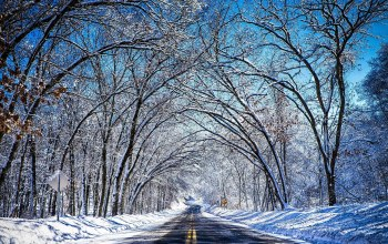snow,sky,winter,Road,mountain,trees,blue