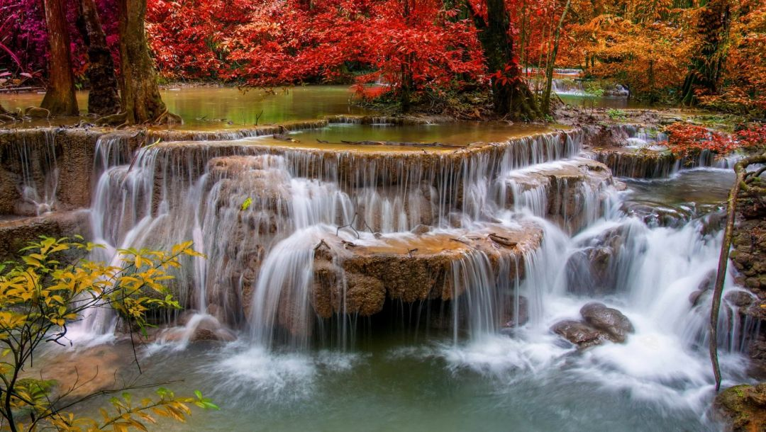 colors,rock,tree,forest,waterfall,water,river