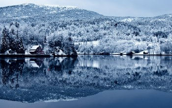 water,tree,forest,snow,Cottage