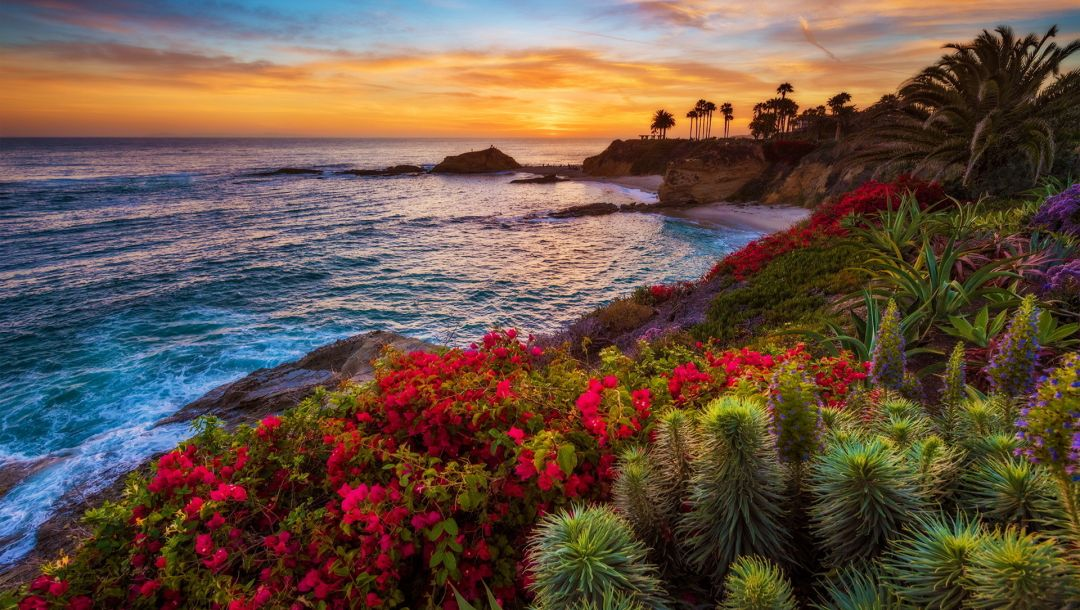Laguna beach,california,Sunset