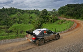 Road,rally,forest