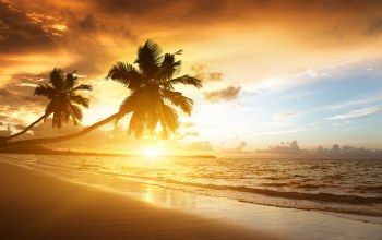 sunrise,caribbean,landscape,beach,ocean,sky,palms,clouds,sunlight,shore