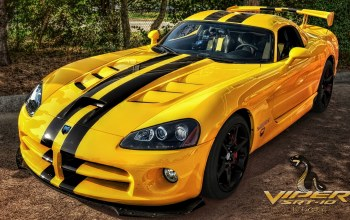 dodge viper,yellow