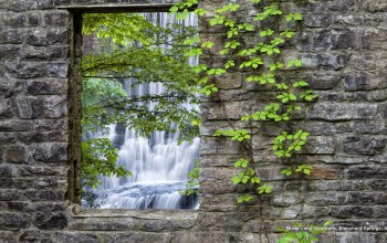 wall,U.S,Vines,leaves,landscapes,waterfall,Arkansas,stones