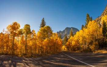 tree,autumn,Road,sky,mountain