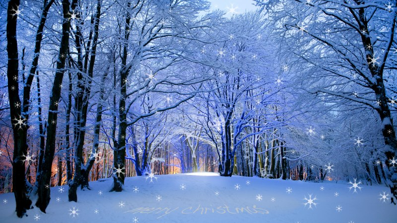 Rogaland Fylke,vaaland,stavanger,merry christmas to you all,norway
