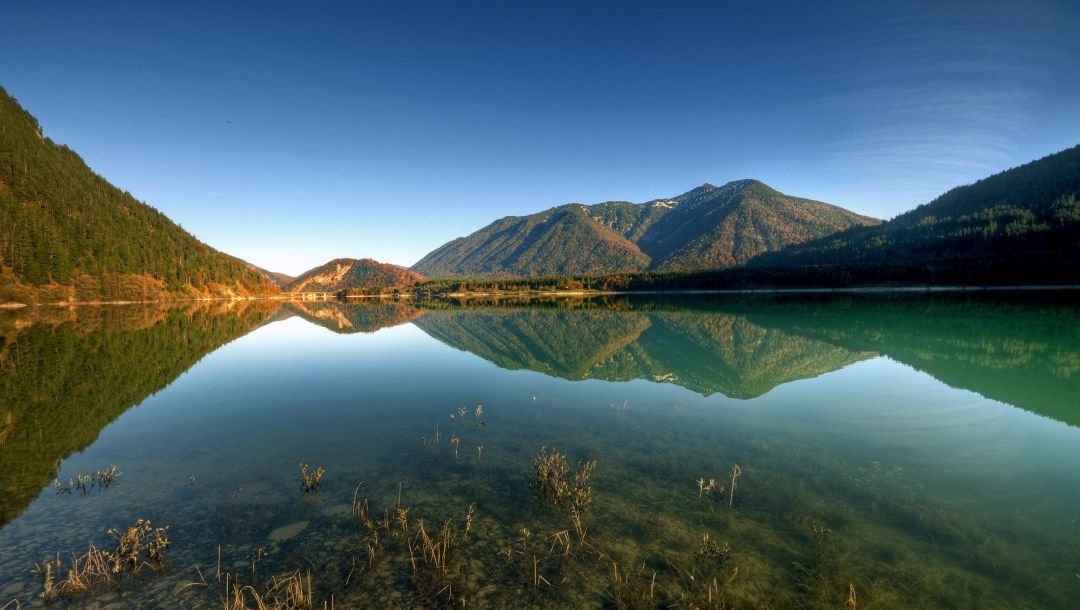 tree,mountain,blue,sky,forest,water