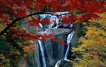 mountain,waterfalls,autumn,grass,colors,leaves,trees