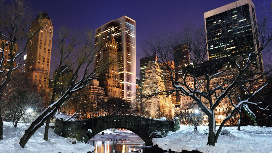 central_park,Nyc,new_york
