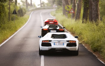 White,Road,Red,three,trees,lamborghini aventador,Mix