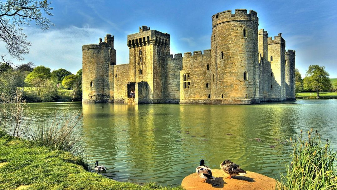 ducks,bodiam castle,water