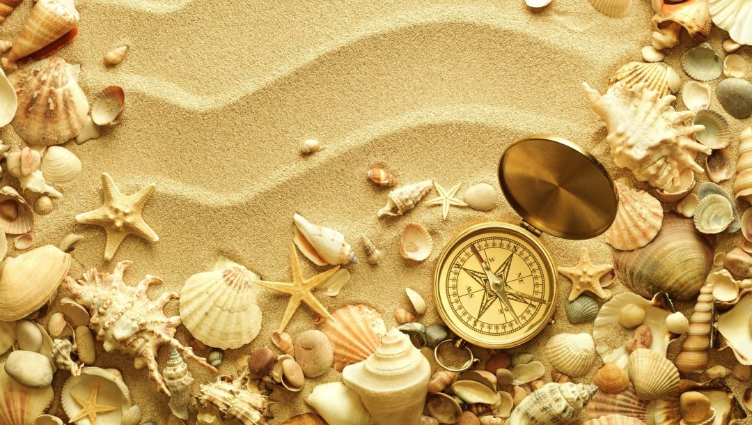 creative,starfish,компас,ракушки,sand,лето,креатив,Seashells,Compass,summer