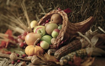 harvest,кукуруза,Pears,leaves,pumpkins,Apples,autumn,basket,vegetables,Corn,осень,овощи,berries,...
