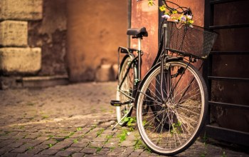 photography,bicycle,flower,bike,street
