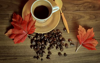 coffee,leaves,осень,cup,autumn,beans,книга,кофе