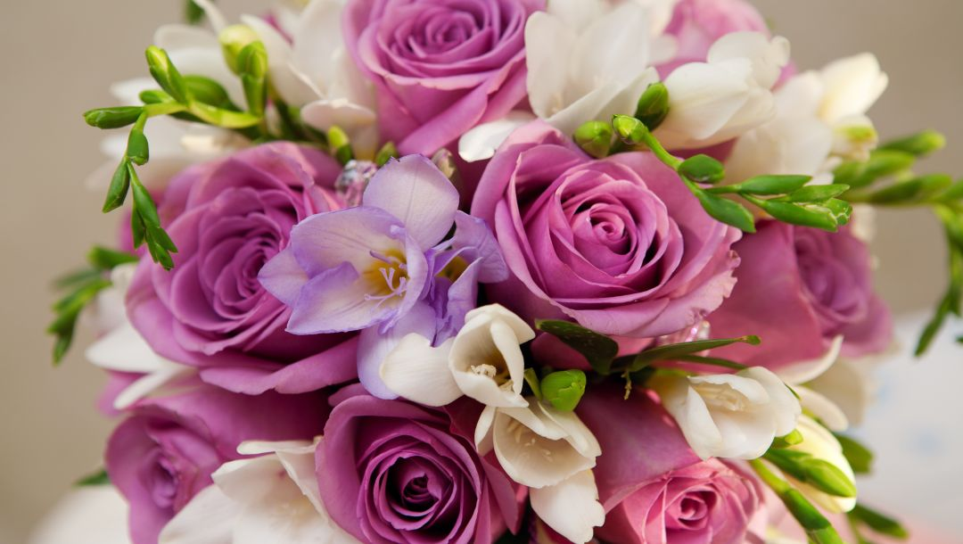 цветы,Violet flowers,roses,Bouquet