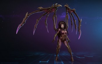 Starcraft 2 heart of the swarm,сара герриган,heroes of the storm