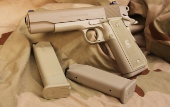 charger with capacity of 10 munitions,.45 ACP,extra boots,1O shots,weapon,.45,Para ...