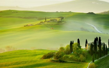 spring,hills,grass,Tuscany,italy