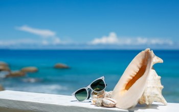 beach,shells,accessories,vacation,blue sky,glasses,summer