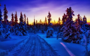 mountain,snow,Road,sky,trees,blue,winter