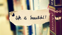paper,book,Life is beautiful