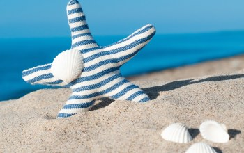 blue,Seashells,sand,summer,starfish,beach,ракушки
