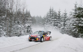 rally,winter,forest,snow