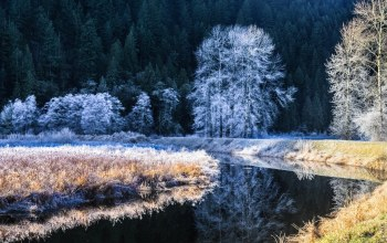 cold,river,winter,snow