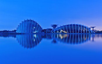 evening,Malaysia,Singapore,reflection,малайзия,gardens by the bay