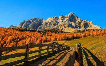 mountain,path,fence,autumn