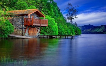 cabin,water,tree