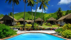 Swimming pool,vacation,palm trees,tropical