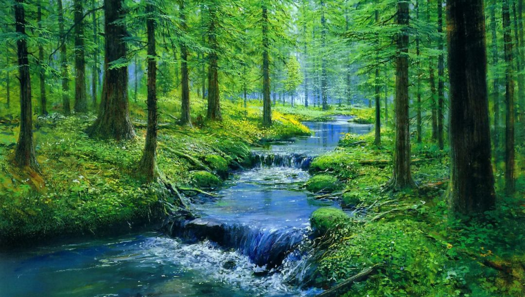 stone,forest,water,tree