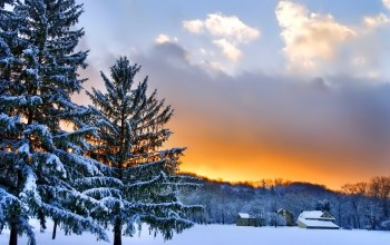 Cottage,mountain,snow,winter,tree