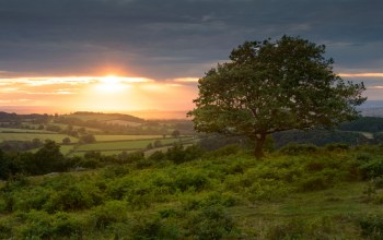 Leicestershire,Charnwood Forest,поля,england,Лестершир,Beacon Hill Country Park