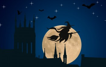Hat,bats,vector,spiers,stars,Halloween,silhouette,church,vector art,flying broom,witch,holyday,Spooky