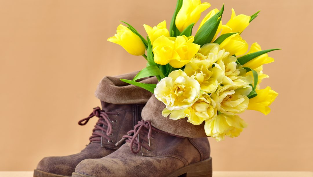 ботинки,boots,tulips,Bouquet