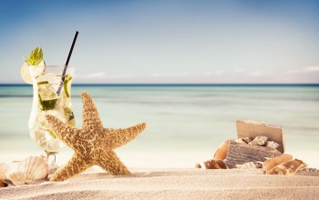 summer,ракушки,каникулы,vacation,Seashells,sand,beach,starfish,лето,Mojito
