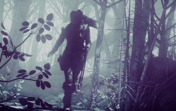 game,vegetation,girl,Lara Croft Rise Of The Tomb Raider,woman,lara croft,tomb raider