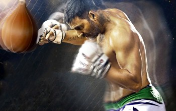 gloves,film,fighter,movie,sport,boxe,brothers,Akshay Kumar,cinema