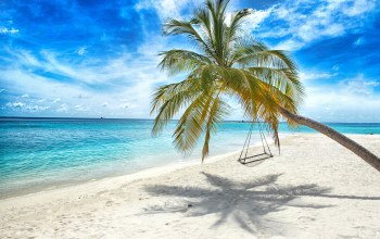 palms,tropical,sand,summer,island,качели,paradise,beach