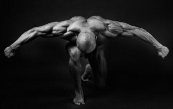 bodybuilder,pose,back,muscles,arms