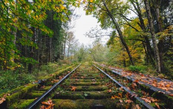 railway,fall,abandoned,Railroad,autumn,decay