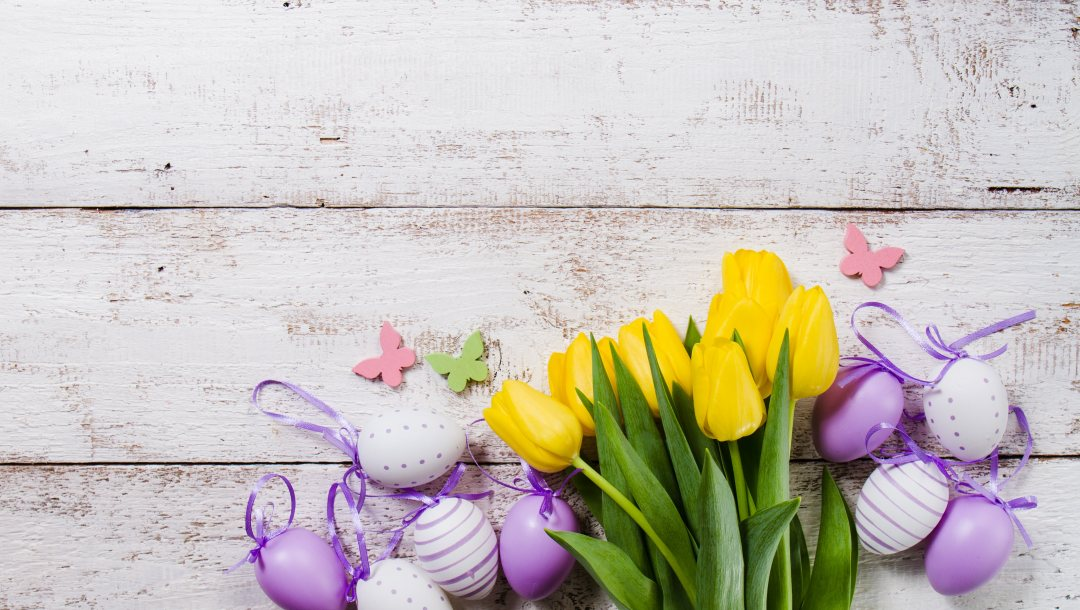 yellow,eggs,Easter,tulips,flower